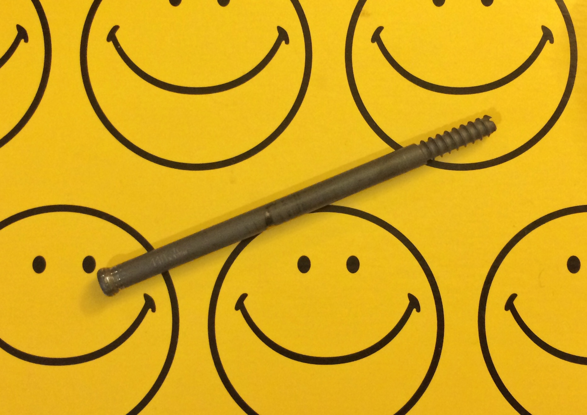 Smiles and a screw (from my leg).